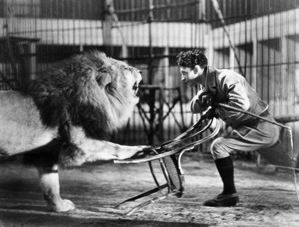 Carnies Photograph - Lion Tamer, 1930s by Granger