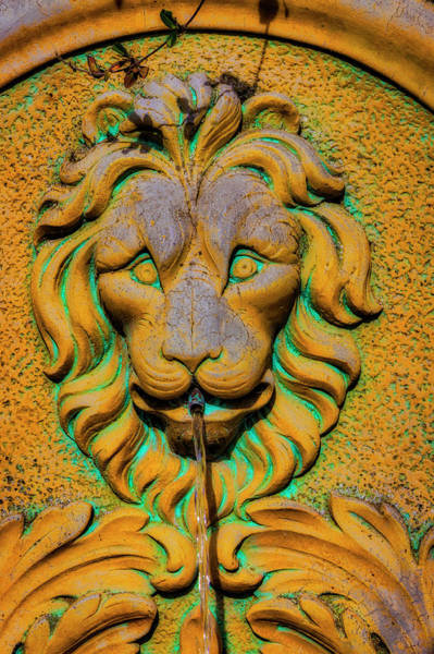 Wall Art - Photograph - Lion Water Fountain by Garry Gay
