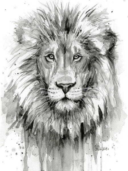 Lions Painting - Lion Watercolor  by Olga Shvartsur