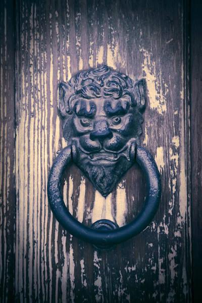 Photograph - Lionhead by Maria Heyens