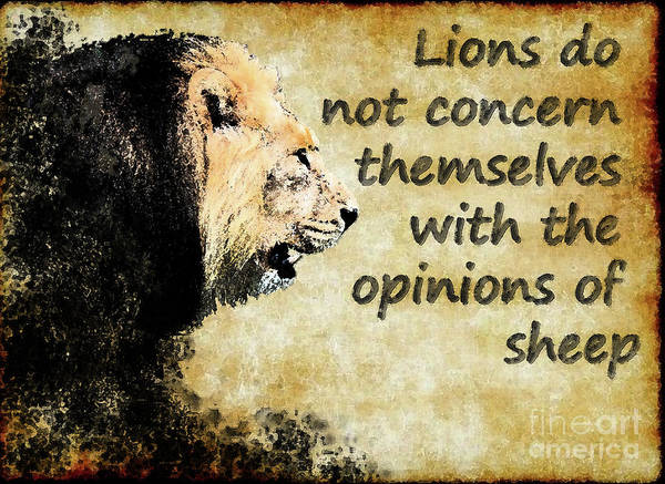 Individuality Digital Art - Lions Concern by Spade Photo