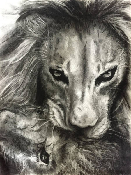 Drawing - Lion's World by Michelle Pier