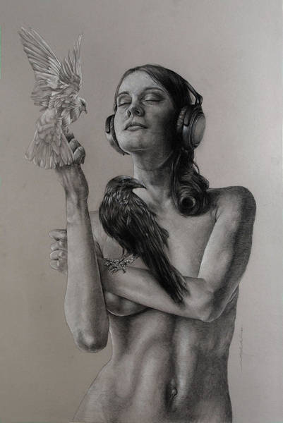 Songbird Wall Art - Drawing - Listen 11 by Brent Schreiber