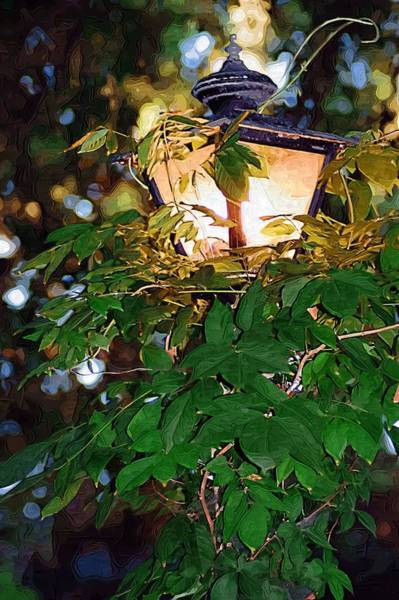 Photograph - Lit Lamplight by Donna Bentley