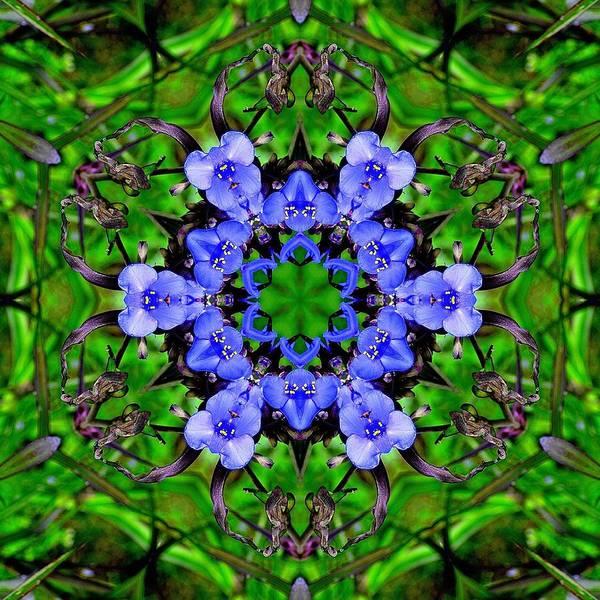 Katrina Digital Art - Litlle Blue Teddy Bears Faces by Katrina Johns