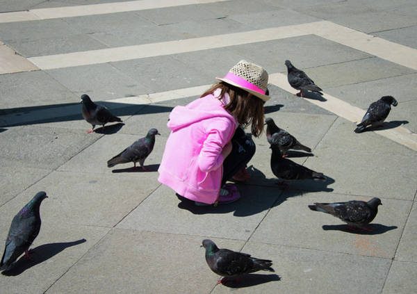 Photograph - Little Pink Dove Whisperer In Venice by Matthias Hauser