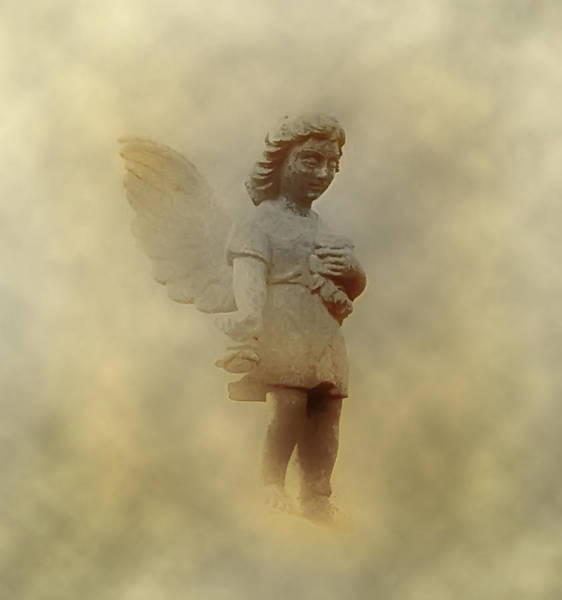 Photograph - Little Angel In The Clouds by Bill Cannon