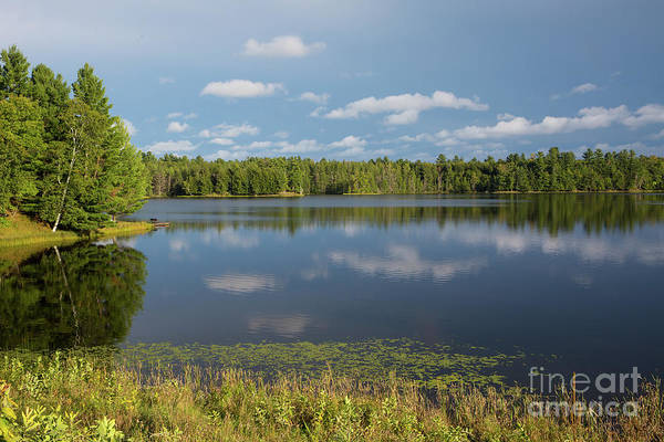 Photograph - Northwoods Lake Reflections by Kevin McCarthy