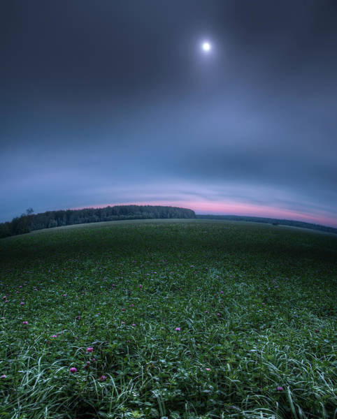 Photograph - Little Big Planet by Alexey Kljatov