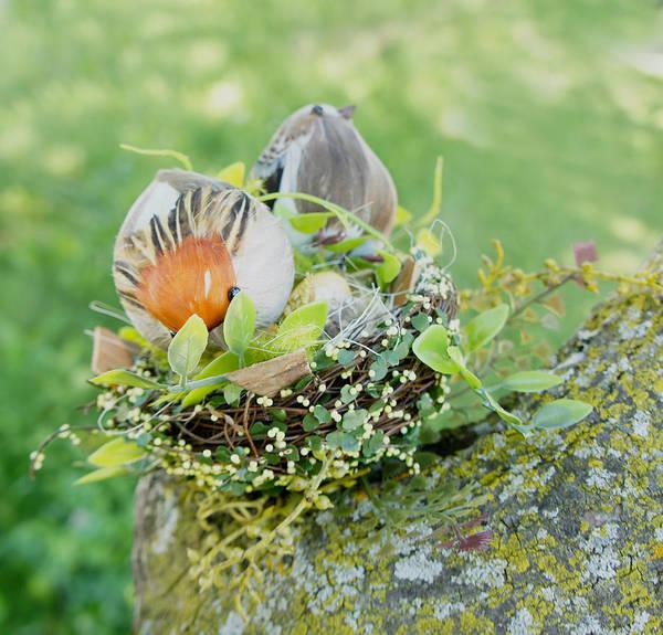 Wall Art - Photograph - Little Birds 2 by Art Spectrum