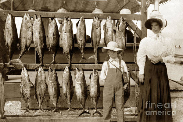 Photograph - Little Boy And His Mother By Tuna Fish Tuna Club Of Santa Catalina 1903 by California Views Archives Mr Pat Hathaway Archives