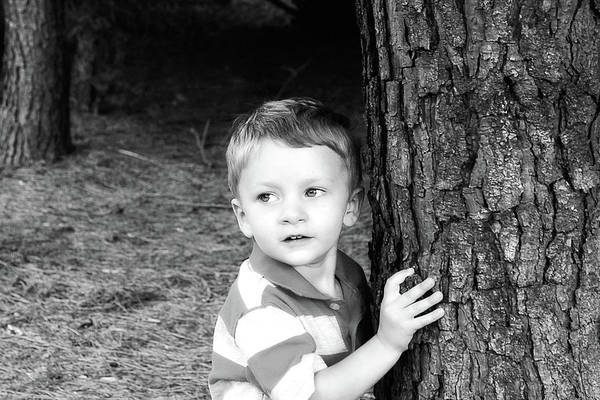 Photograph - Little Boy By The Tree In Black And White by Trina Ansel