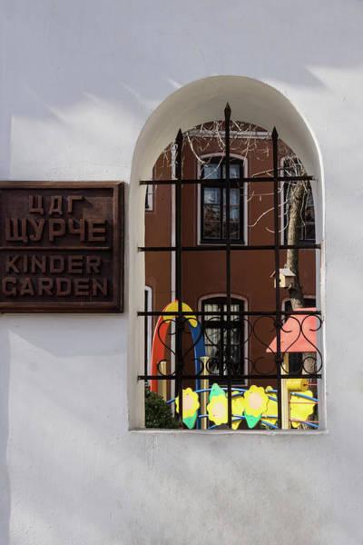 Photograph - Little Cricket Kindergarten - Peeking Through The Garden Fence Window by Georgia Mizuleva