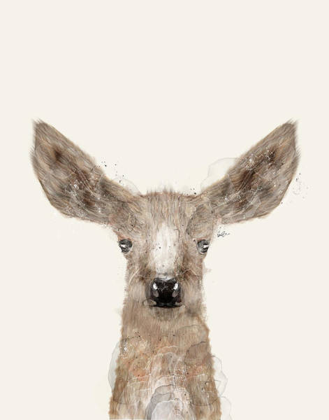 Reindeer Wall Art - Painting - Little Deer Fawn by Bri Buckley