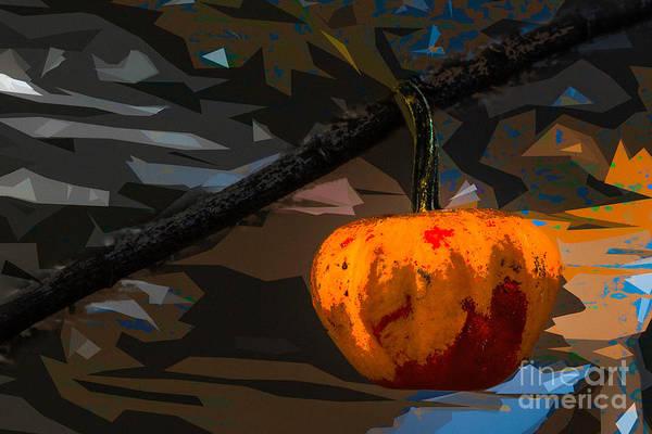 Photograph - Little Fall Pumpkin by Michael Arend