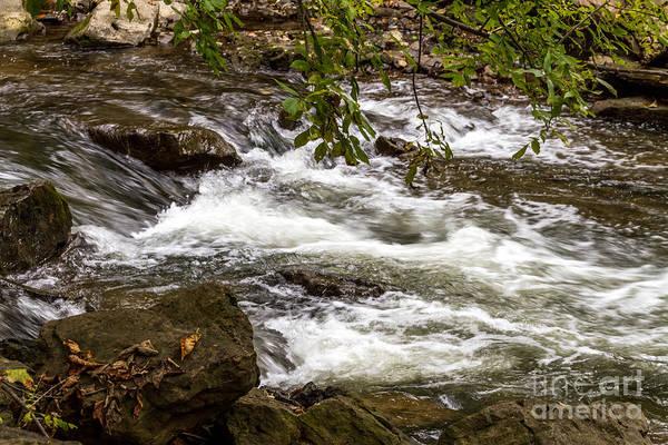 Photograph - Little Falls by William Norton