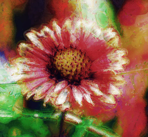 Photograph - Little Flower by Donna Bentley
