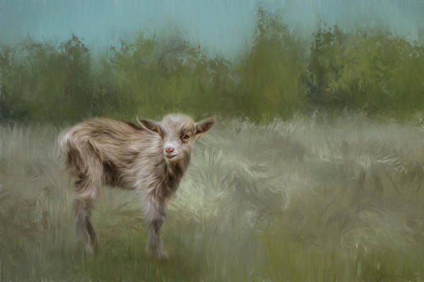 Painting - Little Goat In A Big World by Jai Johnson