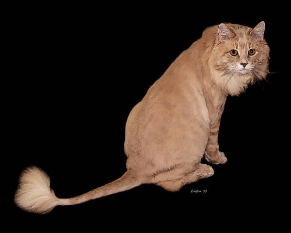 Digital Art - Little Lion King by Larry Linton