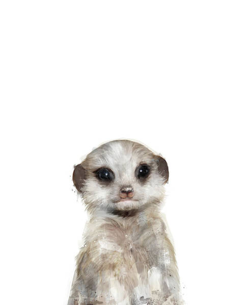 Baby Painting - Little Meerkat by Amy Hamilton