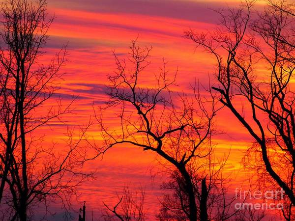 Photograph - Little More Color At Sunset by Donald C Morgan