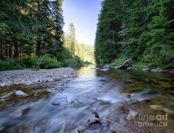 Wall Art - Photograph - Little North Fork Of The Cda by Idaho Scenic Images Linda Lantzy