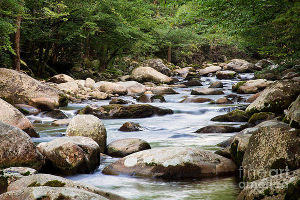 Photograph - Little Pigeon River by Jemmy Archer