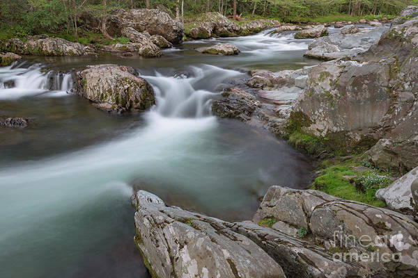 Photograph - Little Pigeon River by Richard Sandford