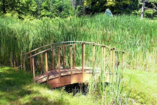 Photograph - 3005 - Little Pond Bridge by Sheryl Sutter