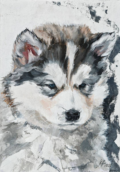 Painting - Little Puppy by Maria Arnaudova