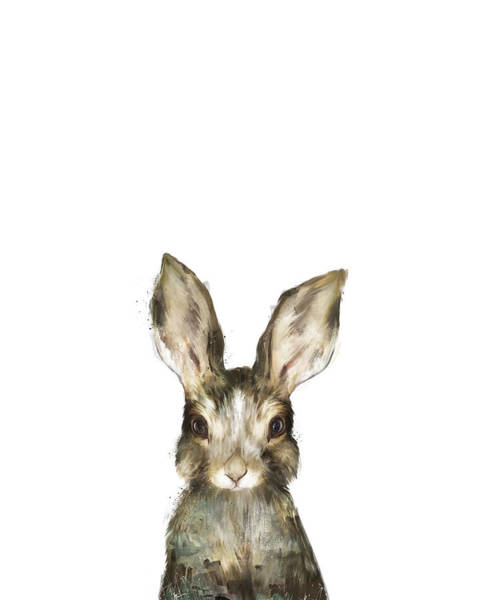 Bunny Rabbit Wall Art - Painting - Little Rabbit by Amy Hamilton