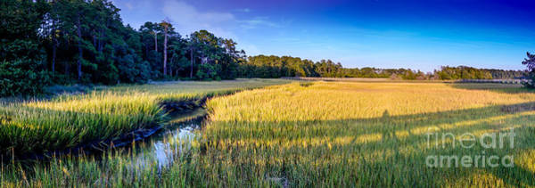 Photograph - Little River Marsh - 2 by David Smith