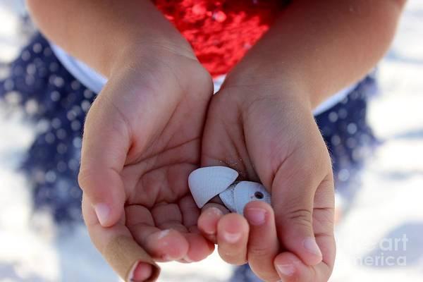 Wall Art - Photograph - Little Shells In Little Hands by Mesa Teresita