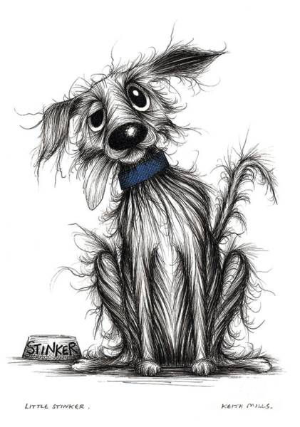 Mutt Drawing - Little Stinker by Keith Mills