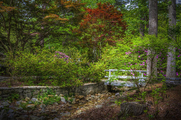 River Walk Photograph - Little Stream by Marvin Spates
