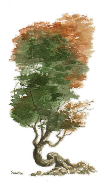 Wall Art - Painting - Little Tree 15 by Sean Seal