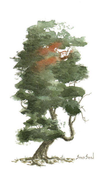 Wall Art - Painting - Little Tree 16 by Sean Seal