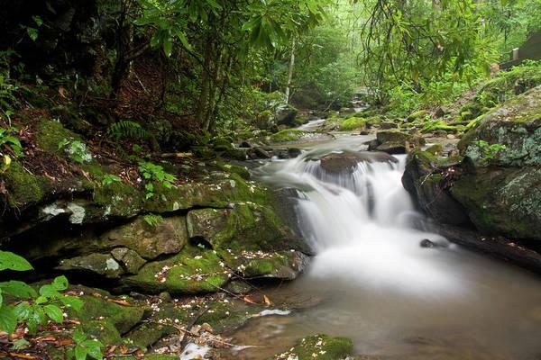 Photograph - Little Waterfall by Jill Lang