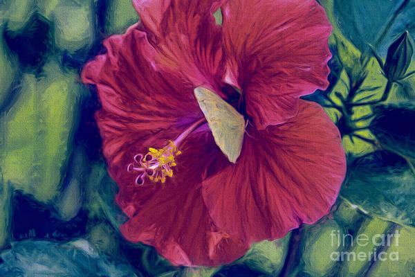 Hibiscus Flower Painting - Little Yellow Buddy by Deborah Benoit