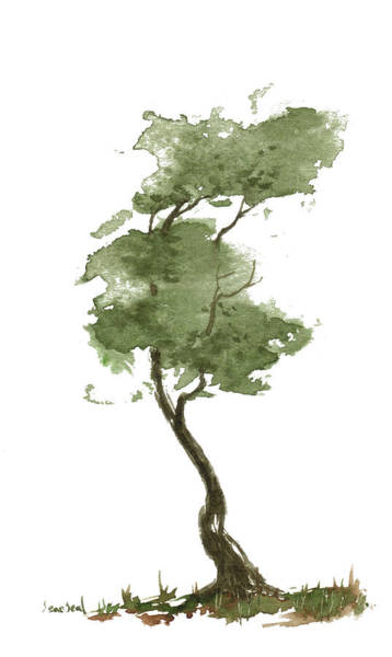 Wall Art - Painting - Little Zen Tree 206 by Sean Seal