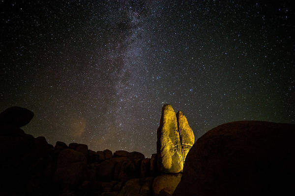 Joshua Tree National Park Wall Art - Photograph - Live Long And Prosper by Peter Tellone
