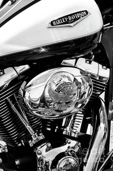 Wall Art - Photograph - Live To Ride Harley by Tim Gainey