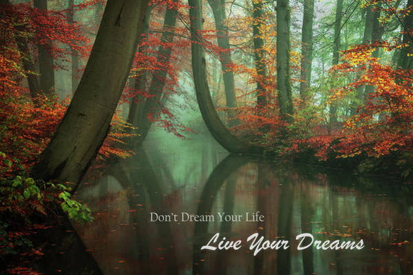 Wall Art - Photograph - Live Your Dreams by Martin Podt