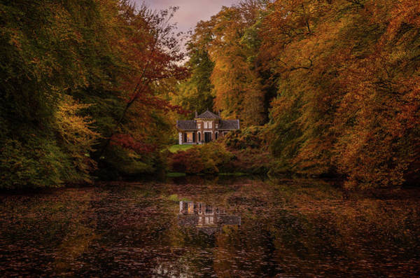 Photograph - Living Between Autumn Colors by Mario Visser