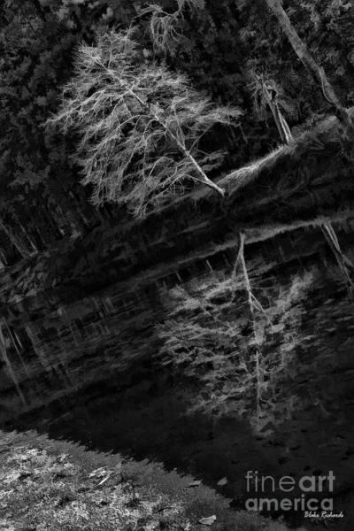 Photograph - Living On River Edge by Blake Richards