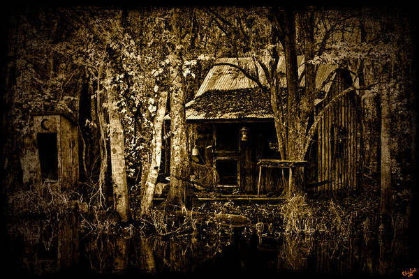 Photograph - Living On The Bayou by Chris Lord