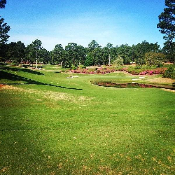 Sport Wall Art - Photograph - Living The Dream #pinehurst4 #4 by Scott Pellegrin