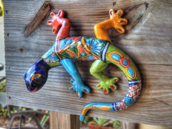 Photograph - Lizard by Michael Colgate