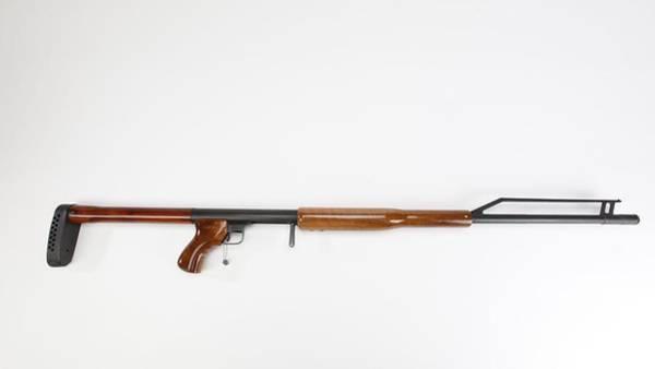 Digital Art - Ljutic Space Rifle by Maye Loeser