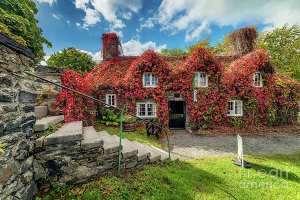 Wall Art - Photograph - Llanrwst Tea Room by Adrian Evans